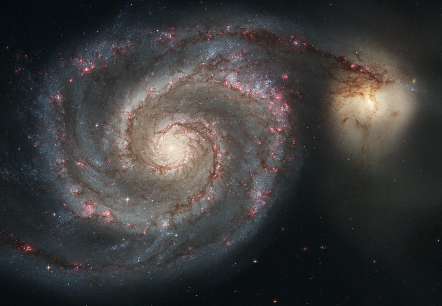 The iconic Whirlpool Galaxy, well-known due to its distinctive shape, seen here in a classic Hubble Space Telescope image. Credit: NASA, ESA, S. Beckwith (STScI), and The Hubble Heritage Team (STScI/AURA)