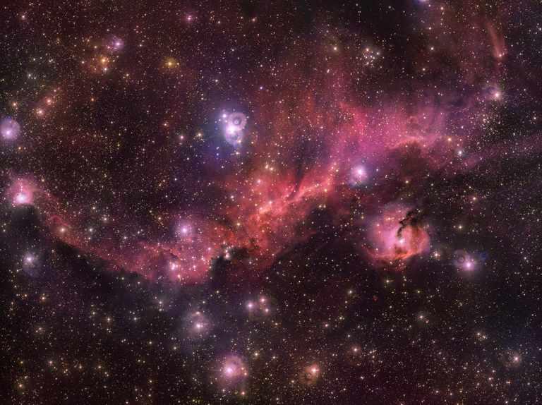 VLT Survey Telescope images the Seagull Nebula