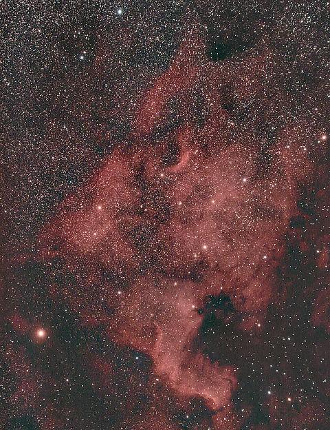 The North America Nebula Paul Gordon, Rochford, 22 July 2019. Equipment: Canon EOS 60Da DSLR camera, Borg 77EDII refractor, Sky-Watcher HEQ5 Pro SynScan mount.