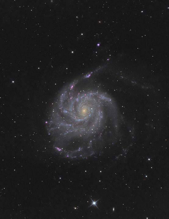 M101 Frederic Vandewattyne, Belgium, June & July 2019. Equipment: ZWO ASI 1600MM camera, CFF 200 f/5 Newtonian