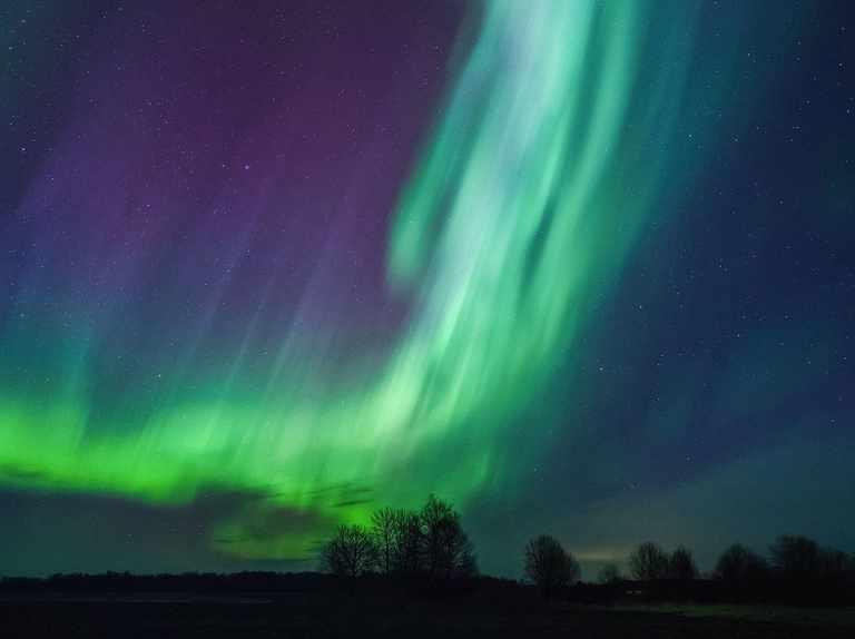 A brief history of aurora science