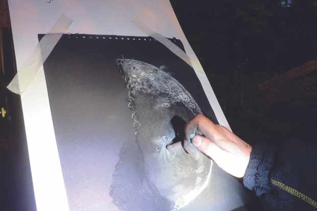 There's no better way to familiarise yourself with the Moon than by drawing it. Credit: Deirdre Kelleghan.