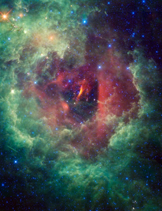 The Rosette Nebula, as seen by NASA's Wide-field Infrared Survey Explorer telescope.