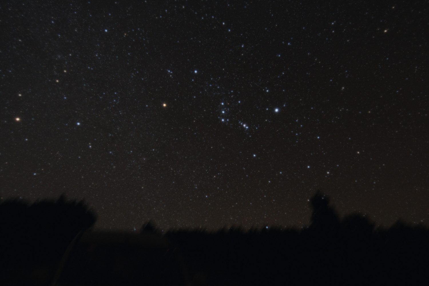 Autumn sees the return of Orion to the night sky. Credit: Bernhard Hubl / CCDGuide.com