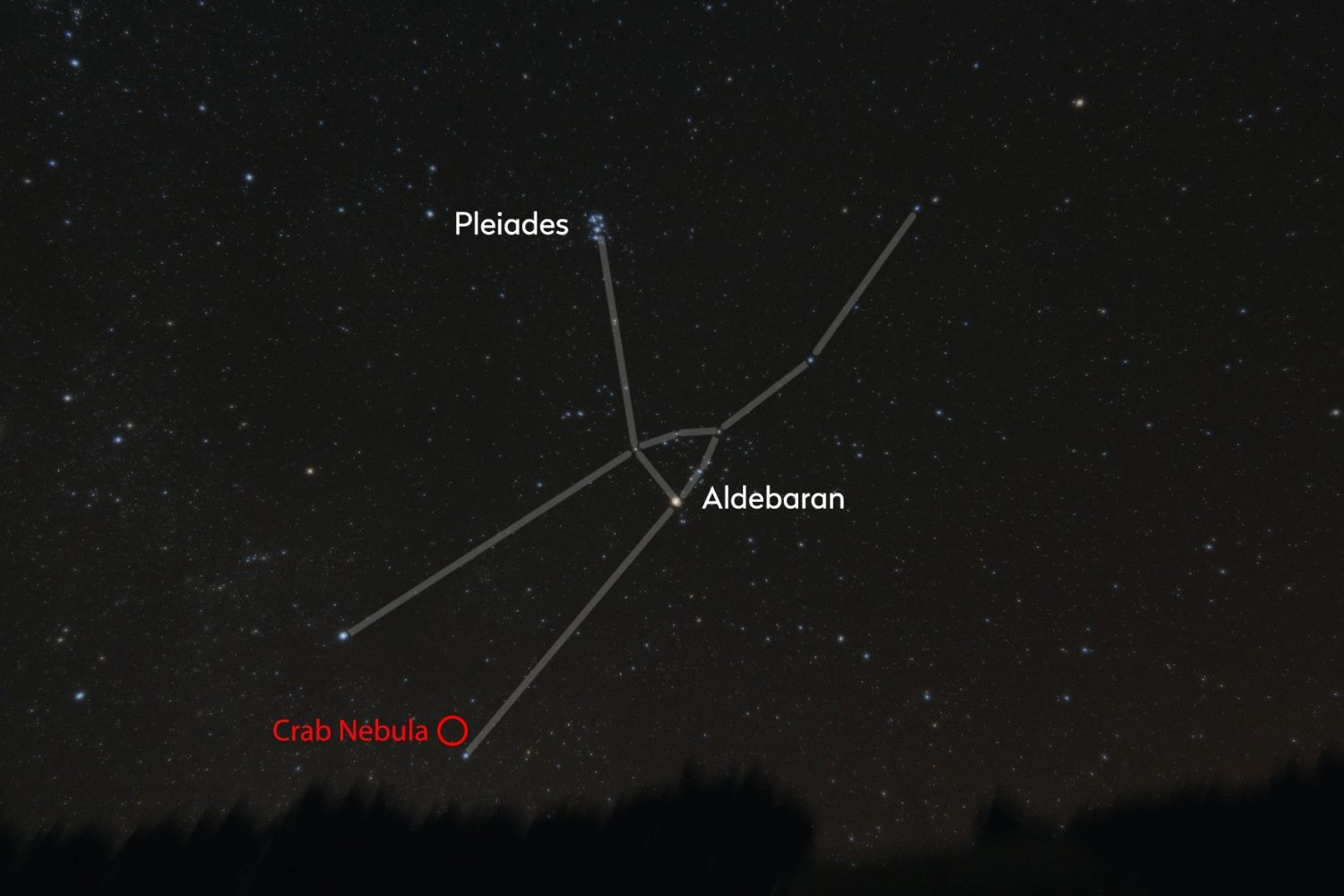 Locate the Taurus constellation (use the Pleiades to help you) to find Aldebaran and the Crab Nebula. Credit: Bernard Hubl / CCDGuide.com