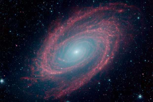 Spitzer spots nearby spiral galaxy M81. Credit: NASA/JPL-Caltech