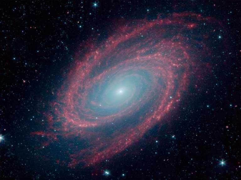 Spitzer spots spiral galaxy M81