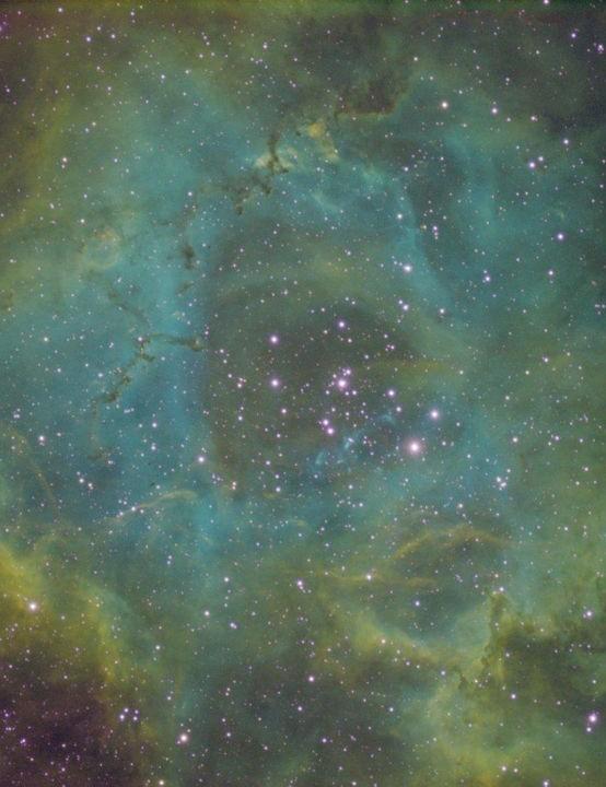 The Rosette Nebula Kevin Hearn, Bury St Edmunds, Suffolk, 21, 23, 24 February 2019 Equipment: Atik 460ex mono camera, Sky-Watcher Evostar ED80 Pro refractor, Sky-Watcher NEQ6 Pro mount.