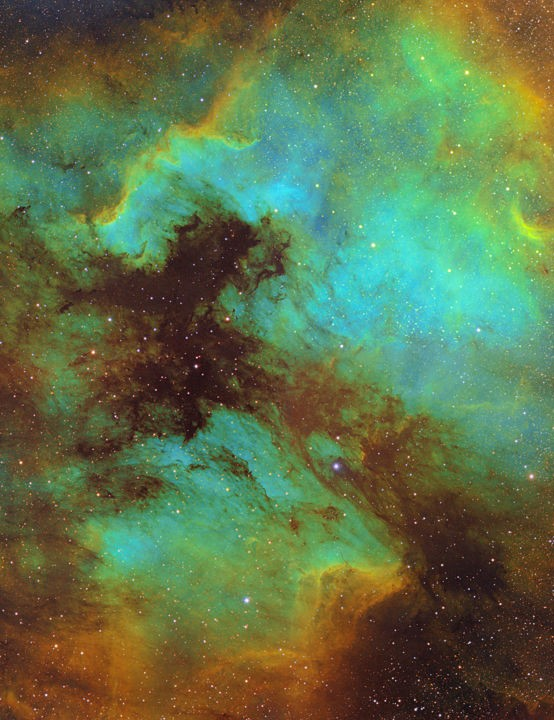 North America and Pelican Nebulae, Jenny King, Kent, 25 August–8 September 2019 Equipment: QSI 690 CCD camera, TS Optics TSQ-71ED quadruplet flatfield refractor, Sky-Watcher EQ6 mount