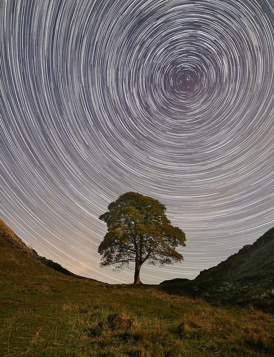 Sycamore Gap Tree star trails Kevin Stewart, Northumberland, 20 September 2019 Equipment: Canon EOS 6D DSLR, Samyang 14mm lens