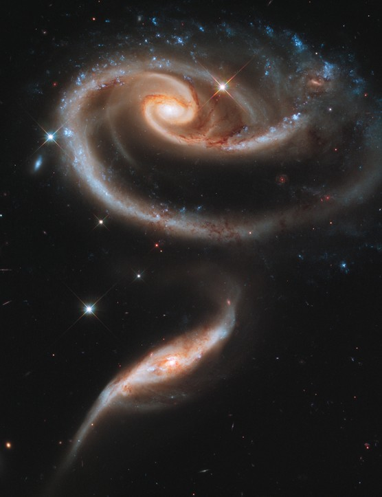 Arp 273 20 April 2011. A pair of interacting galaxies called Arp 273 form the shape of a rose. It's thought the smaller galaxy has passed through the larger one. Credit: NASA, ESA and the Hubble Heritage Team (STScI/AURA)