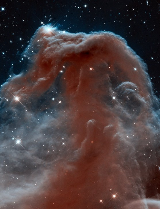 Horsehead in infrared 19 April 2013. Released to celebrate the telescope's 23rd year, this image shows the Horsehead Nebula in infrared light. Credit: NASA, ESA, and the Hubble Heritage Team (AURA/STScI)