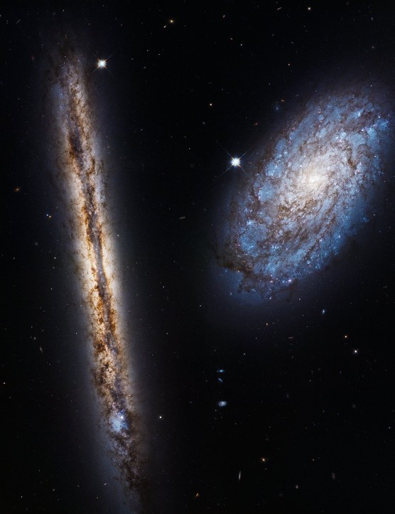 Galactic pairing 20 April 2017. Galaxies NGC 4302, seen edge-on, and NGC 4298, both located 55 million lightyears away. Credit: NASA, ESA, and M. Mutchler (STScI)