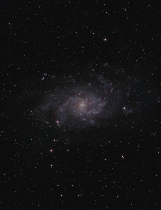 16 – Triangulum Galaxy M33 David Pickles, Rushden, Northamptonshire, 18 November 2019 Equipment: ZWO ASI071MC Pro camera, Altair Wave 115EDT telescope