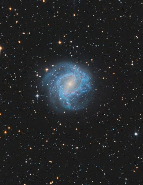 Southern Pinwheel Galaxy Rogerio Alonso, Minas Gerais, Brazil, 19 August 2018. Equipment: ZWO Optical ASI1600MM CMOS camera, SkyWatcher 200/1000mm Newtonian, SkyWatcher AZ-EQ6 GT mount