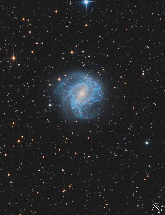 Southern Pinwheel Galaxy Rogerio Alonso, Minas Gerais, Brazil, 19 August 2018. Equipment: ZWO Optical ASI1600MM CMOS camera, SkyWatcher 200/1000mm Newtonian, SkyWatcher AZ-EQ6 GT mount