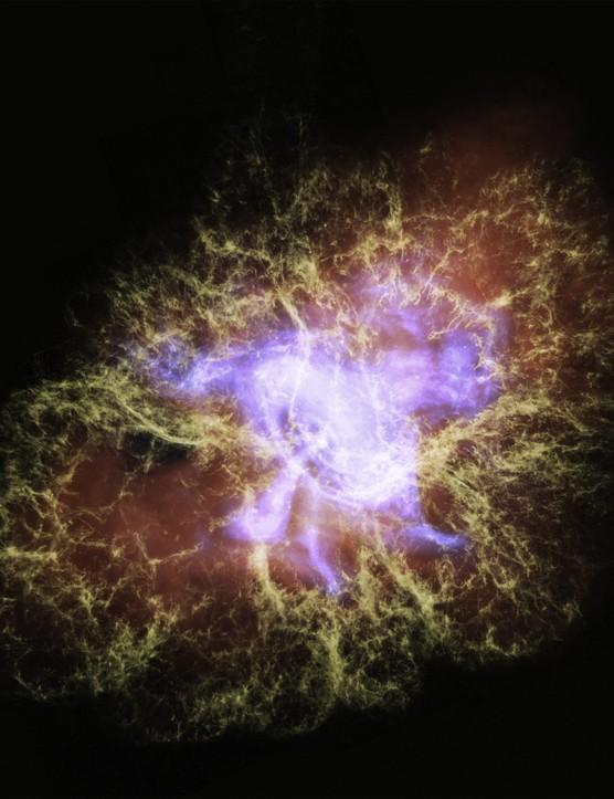 Crab Nebula. Credit: NASA/ESA/STScI/F.Summers, et al.; NASA/CXC/SAO/N.Wolk, et al., & NASA/Caltech/IPAC/R.Hurt