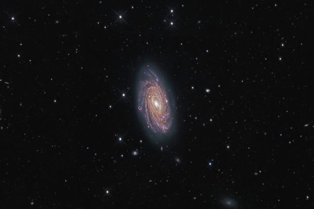 Take an astronomy tour of Ursa Major