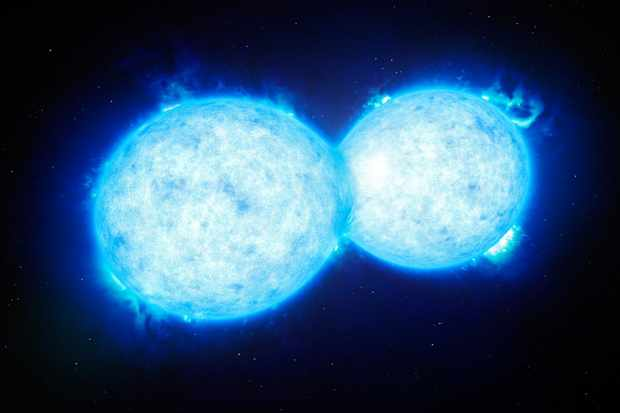 What are the weirdest stars in the Universe?