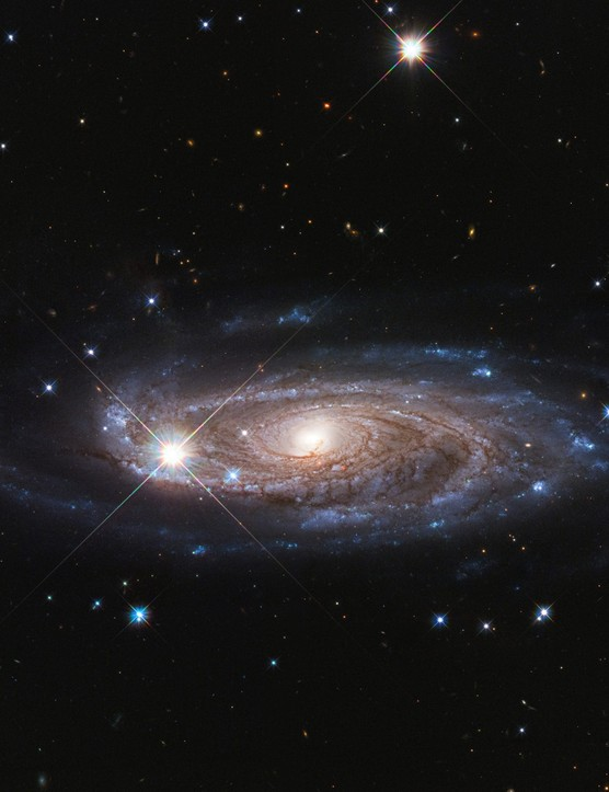 Galaxy UGC 2885. Credit: NASA/ESA and B. Holwerda (University of Louisville)