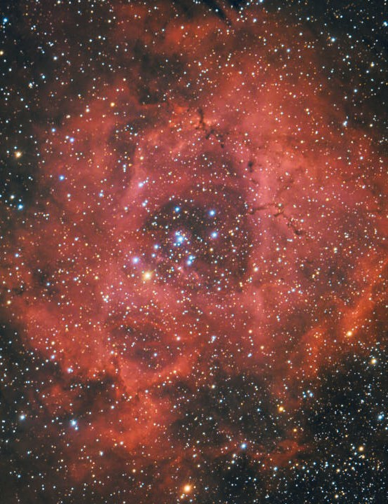 "Rosette Nebula Bob Bowers, Haverhill, Suffolk, 20 January 2020 Equipment: Atik Horizon one-shot colour camera, Celestron 8"" Rowe-Ackermann Schmidt astrograph, Sky-Watcher AZ-EQ6 Pro mount"