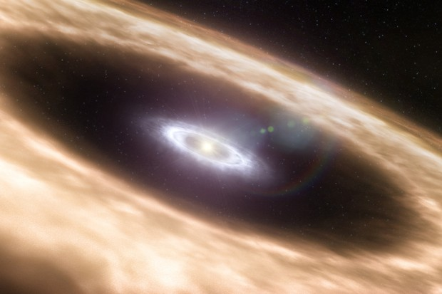 Peter Pan discs: the planetary systems that never grow up