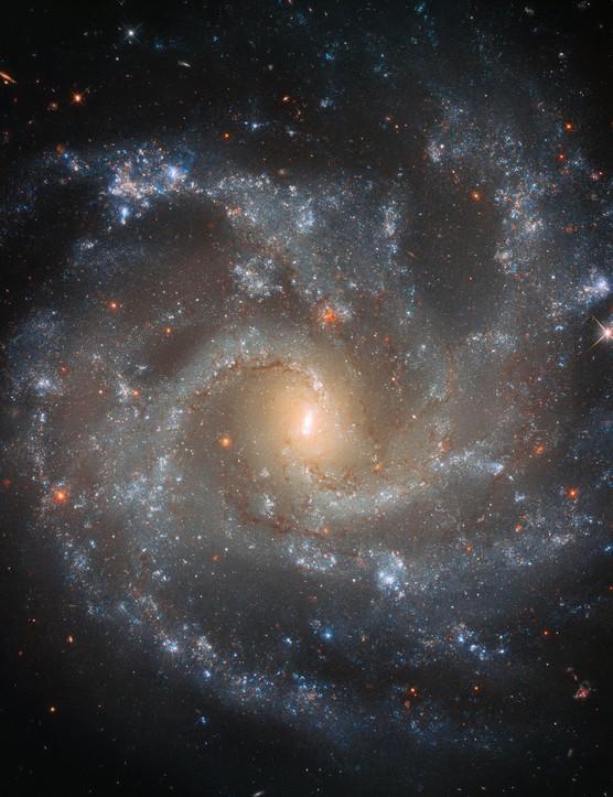 Spiral galaxy NGC 5468. Credit ESA/Hubble & NASA, A. Riess et al. / Acknowledgements: Judy Schmidt (Geckzilla)