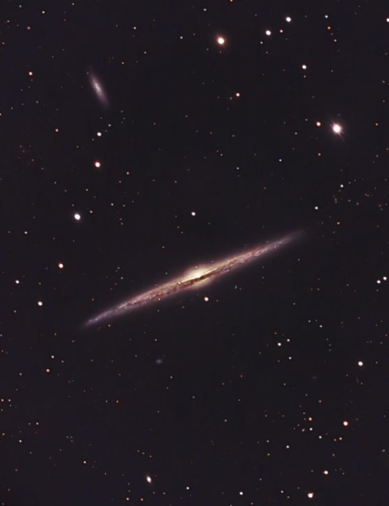 Needle Galaxy Chris Platkiw, Sawley, Derbyshire, 23–25 March 2020 Equipment: ZWO ASI 178MC colour camera, Celestron C8 Schmidt-Cassegrain, Sky-Watcher HEQ5 Pro mount