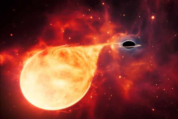 How do black holes form?