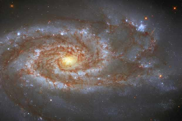 Hubble spies an intermediate spiral galaxy