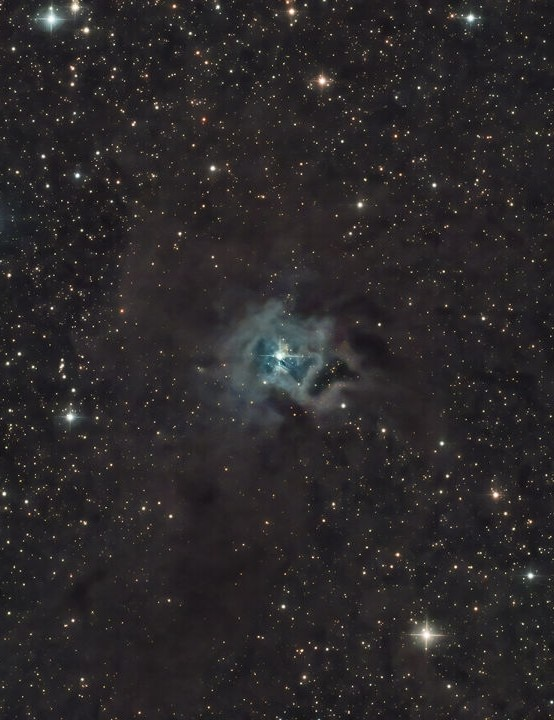 Iris Nebula Jay Bolt, Wakefield, 24 April 2020. Equipment: Altair Hypercam 294C PRO TEC camera, Sky-Watcher 130PDS reflector, Sky-Watcher EQ6-R mount
