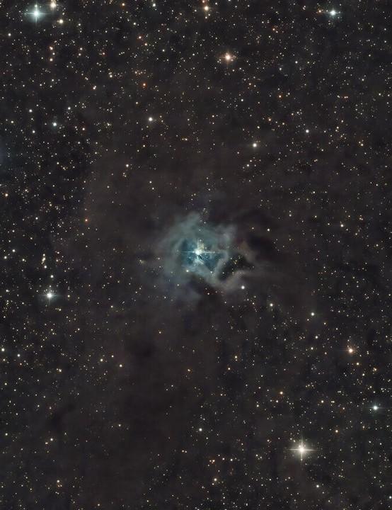 Iris Nebula Jay Bolt, Wakefield, 24 April 2020. Equipment: Altair Hypercam 294C PRO TEC camera, Sky-Watcher 130PDS reflector, Sky-Watcher EQ6-R mount
