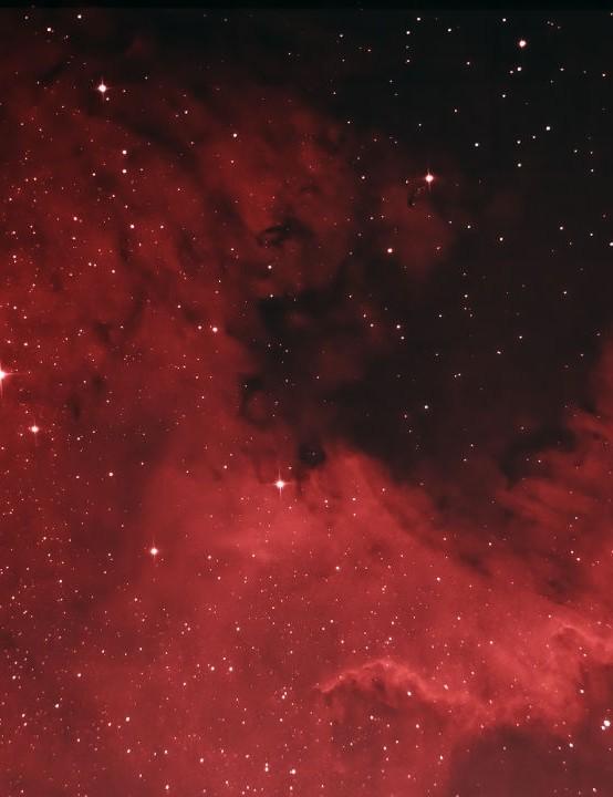 North America Nebula RoyPearman, London, 25 April 2020. Equipment: Canon 600D DSLR, Sky-Watcher 130PDS reflector, Sky-Watcher EQ5 mount