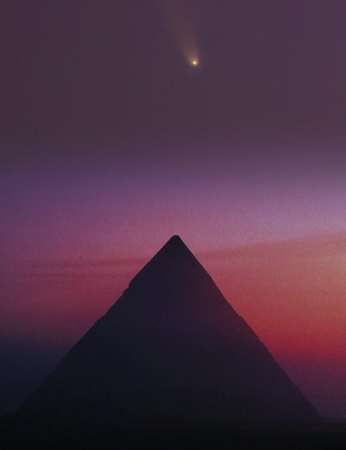 Amr Abdulwahab, Giza, Egypt, 9 July 2020. Equipment: Nikon D750, Tamron 150-500, ISO 1600, 2