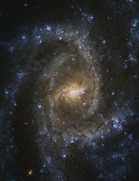 Spiral galaxy NGC 2835Hubble Space Telescope, 14 September 2020. Credit: ESA/Hubble & NASA/J. Lee and the PHANGS-HST Team; acknowledgment: Judy Schmidt (Geckzilla)