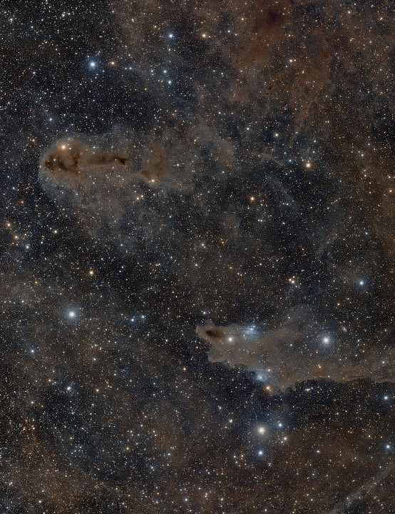 Dark nebulae LDN1235 and LDN1251 André van der Hoeven, Eifel, Germany, 13 and 18 August 2020. Equipment: Nikon D810A DSLR, William Optics SpaceCat 51 apo refractor, Sky-Watcher NEQ6 mount