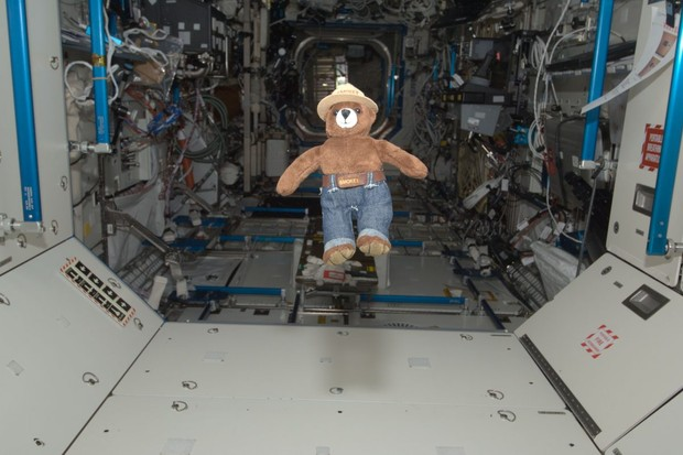The strangest things found on the International Space Station