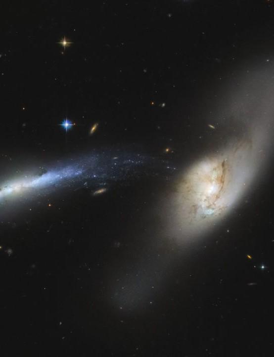 Merging galaxies NGC 2799 (left) and NGC 2798 (right) HUBBLE SPACE TELESCOPE, 23 OCTOBER 2020 IMAGE CREDIT ESA/Hubble & NASA, SDSS, J. Dalcanton, CC BY 4.0; Acknowledgement: Judy Schmidt (Geckzilla)