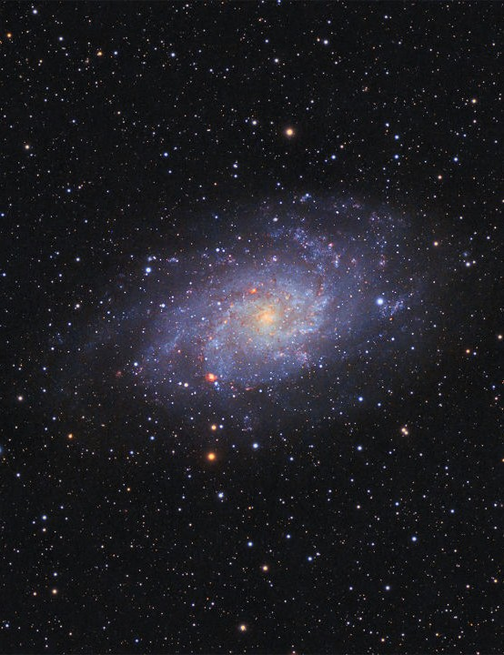 The Triangulum Galaxy Emil Andronic, Bushey, August 2018 and September 2020 Equipment: Canon 600D DSLR, ZWO ASI 294MC Pro camera, TS65 quadruplet f6.5 imaging telescope, Sky-Watcher EQ3 mount