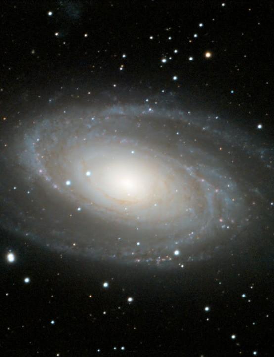 M81 Bode's Galaxy Martina McGovern, Cambridge, 22 November 2020. Equipment: ZWO ASI 294MC Pro camera, Celestron Edge HD 8-inch Schmidt-Cassegrain, Sky-Watcher HEQ5 Pro mount
