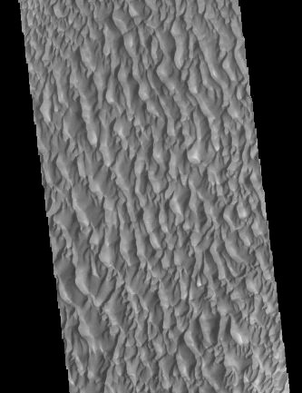 SAND DUNES, PROCTOR CRATER, MARS MARS ODYSSEY, 14 DECEMBER 2020 Credit: NASA/JPL-Caltech/ASU