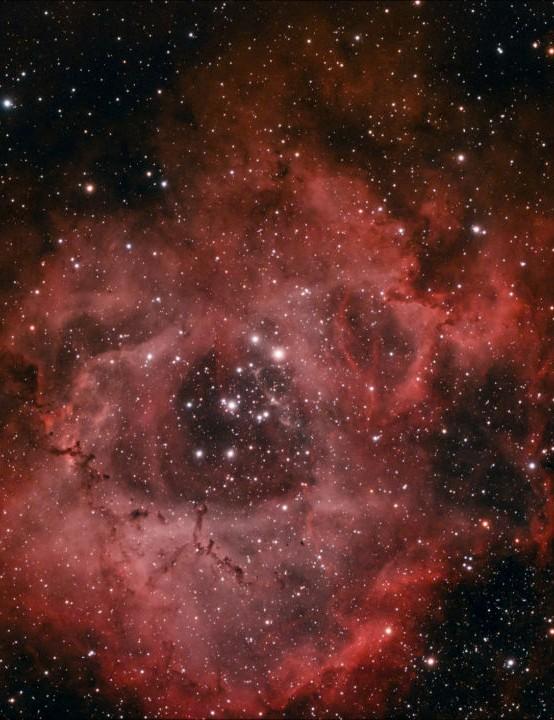 The Rosette Nebula Martin Bracken, Chelmsford, Essex, 22 November 2020. Equipment: ZWO ASI 294MC Pro colour camera, Sky-Watcher Esprit 100ED apo triplet refractor, Sky-Watcher HEQ5 Pro mount
