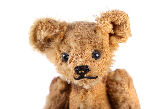 teddy-tagging-to-put-a-stop-to-lost-bears_18322