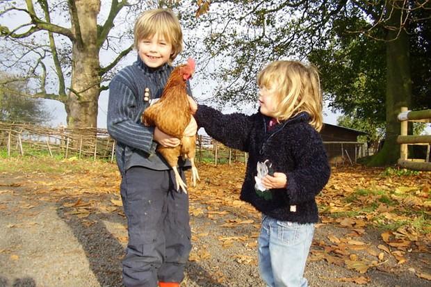 10-family-friendly-farms_5258