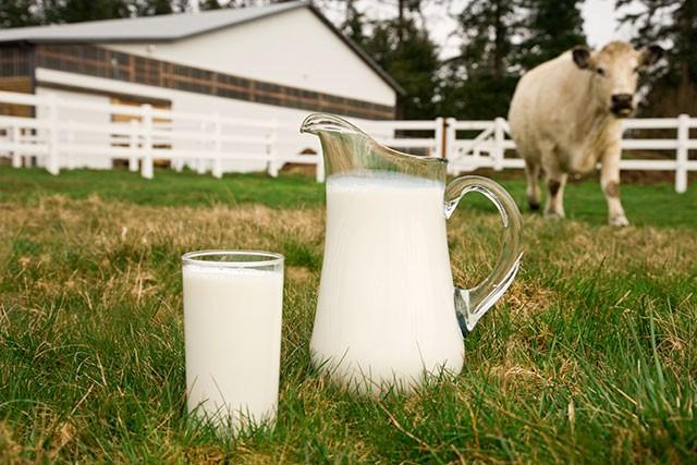 13-weeks-pregnant_week13-organicmilk-94743060