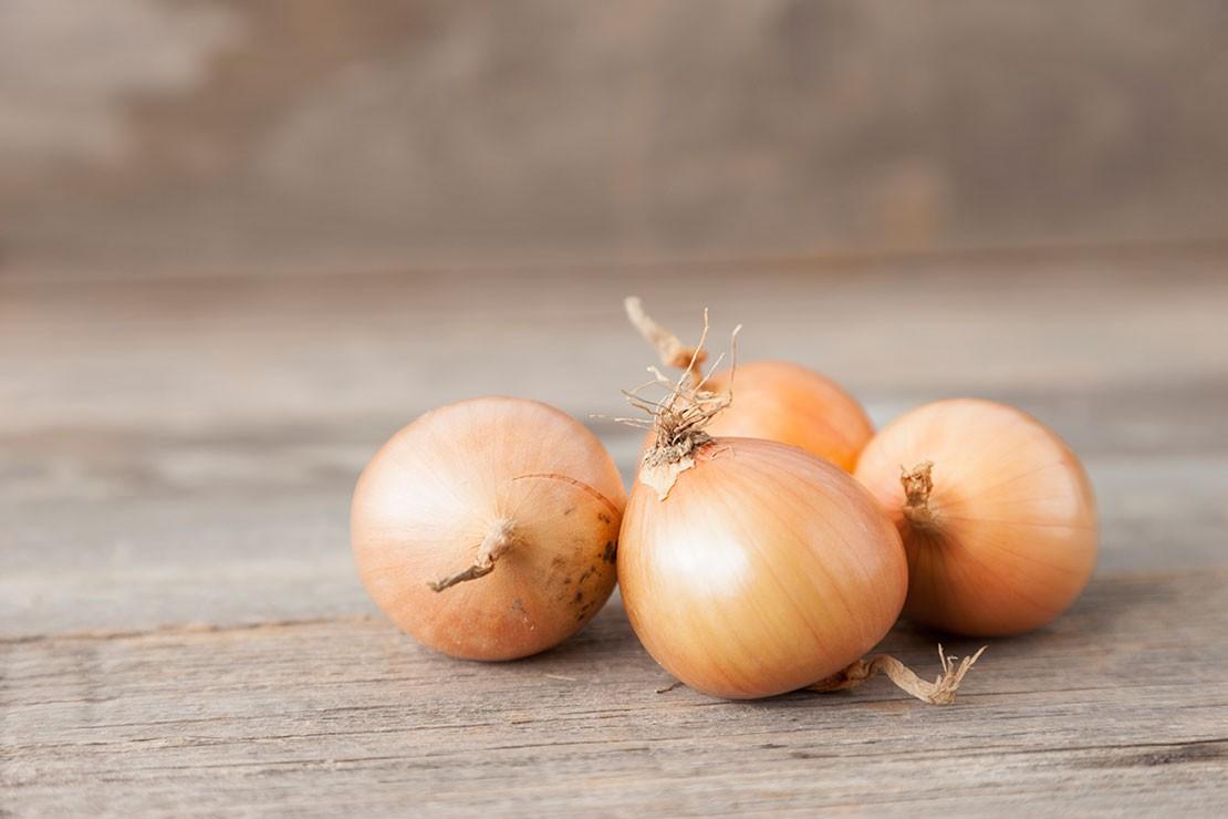 18-weeks-pregnant_week-18-onion