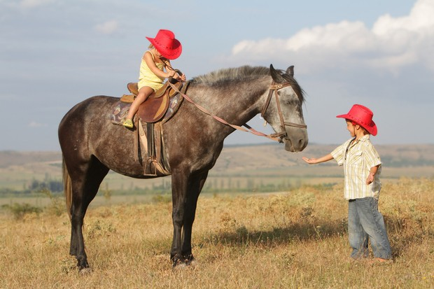 3-year-old-harry-will-ride-at-horse-of-the-year-show_50003
