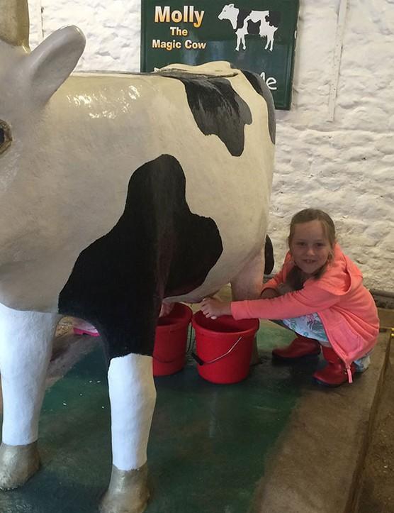 abbotsbury-childrens-farm,-dorset_205736