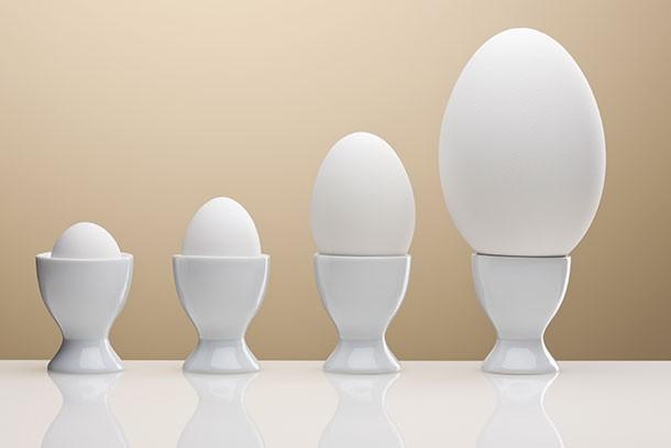 row of bigger and bigger eggs