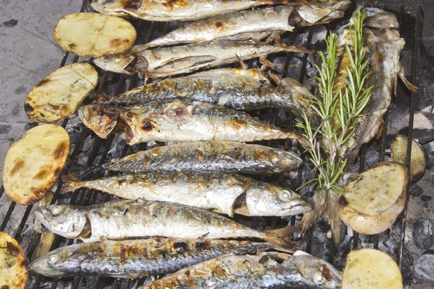 are-mackerel-sardines-herring-and-pilchards-safe-when-pregnant_54035